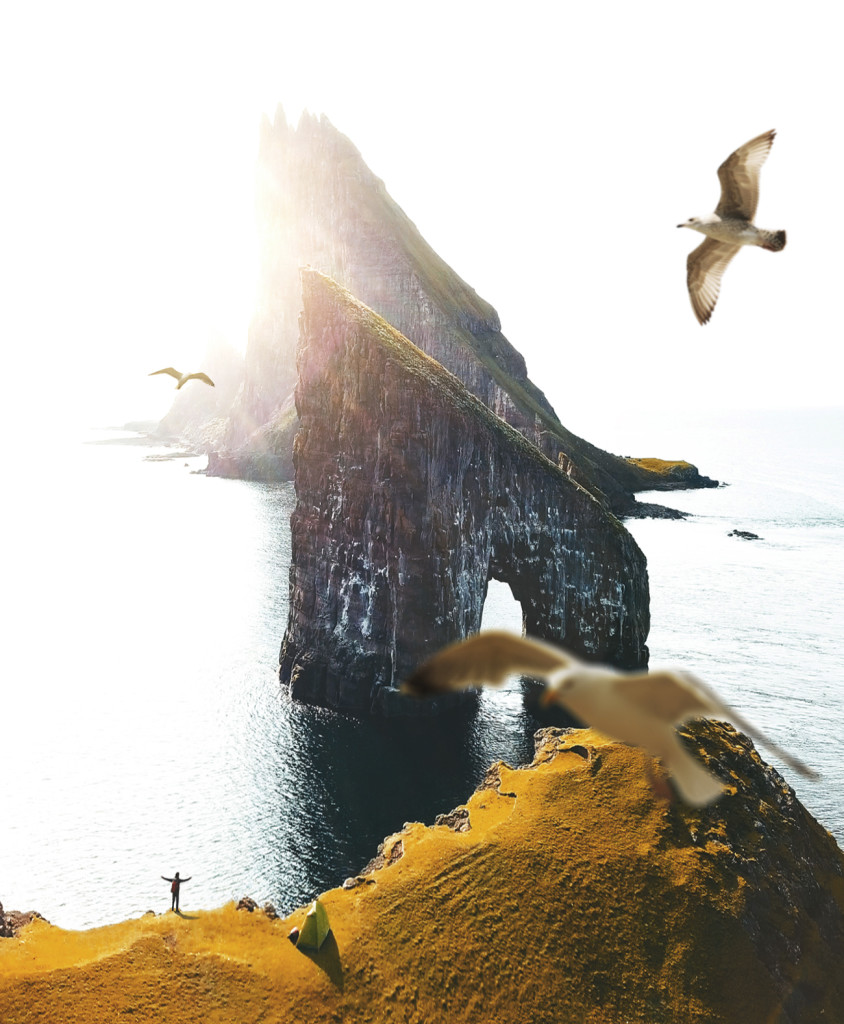 stills_faroe_seagull